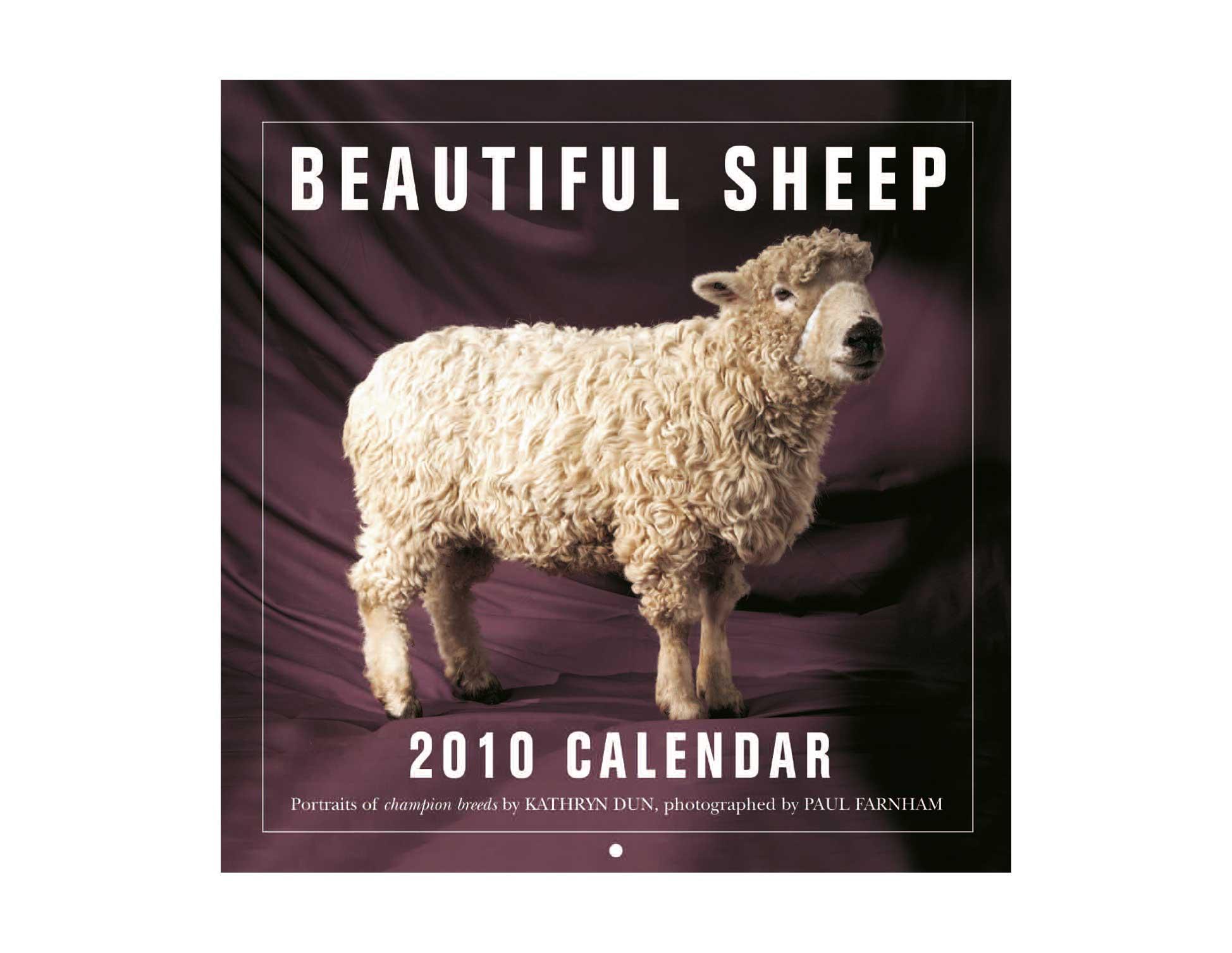 Beautiful Sheep Calendar Cover