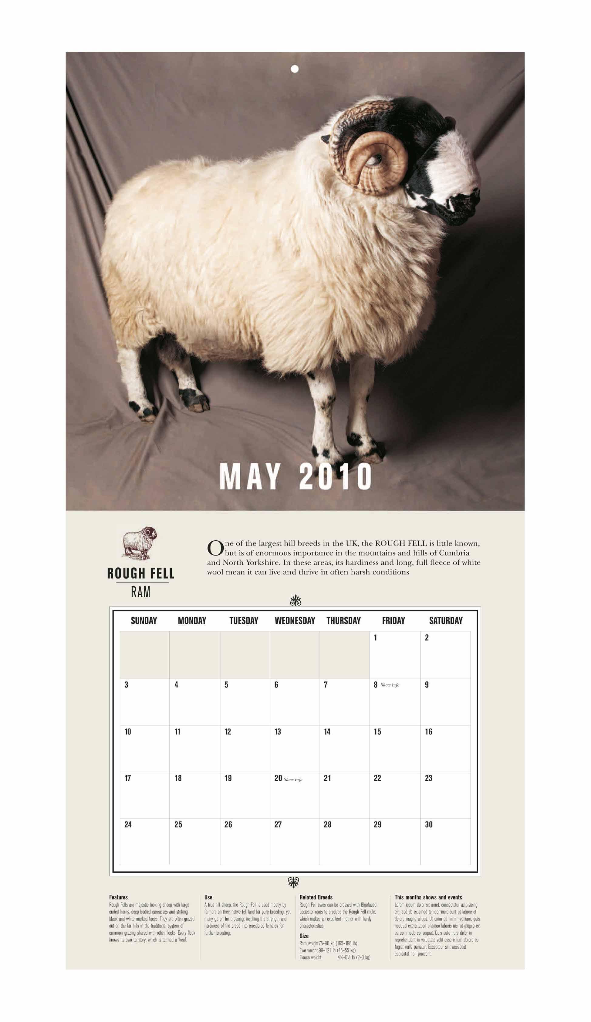 Beautiful Sheep Calendar