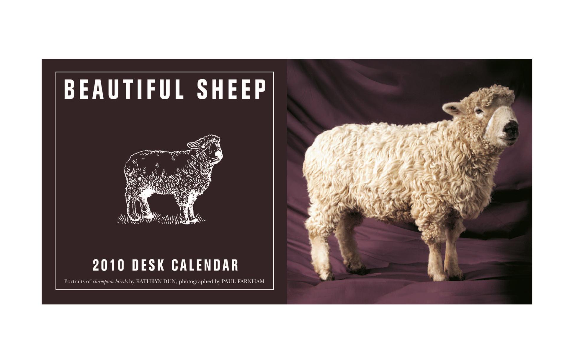 Beautiful Sheep Desk Calendar